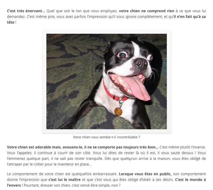 comment dresser son chien gratuitement pdf